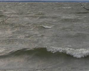 Lake Waves