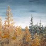 Original oil painting of golden autumn tamarack trees in a tamarack swamp.