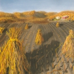 Original 2013 oil painting of corn shocks in a field in autumn.