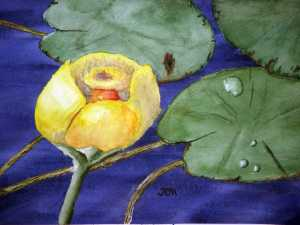 An original 2008 watercolor painting of a yellow lily pad flower among lily pads.