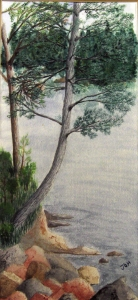 An original 2009 watercolor painting of a cedar tree overhanging the rocky shore of a small lake.