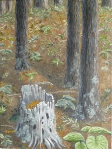 Original 2013 oil painting of a rotting stump of a pine tree in the woods.