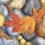 An original 2011 watercolor painting of Orange and red fall leaves that have fallen on some lakeside rocks.