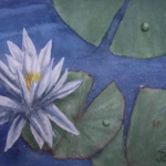 An original 2008 watercolor painting of a white water lily flower and lily pads.
