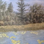 Original 2014 oil painting of a large white pine tree near the shore of a lake with lily pads.
