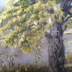 "Tree by a River is an 8""x10"" original oil painting on canvas of an old tree in the sun near a slow moving river in summer."