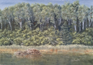 "Beaver Lodge 11""x14"" original plein air oil painting on canvas panel of a beaver lodge near the shore of a wilderness lake."
