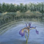 "Wild Iris 12""x9"" original oil painting on canvas of a wild iris near a wilderness lake."