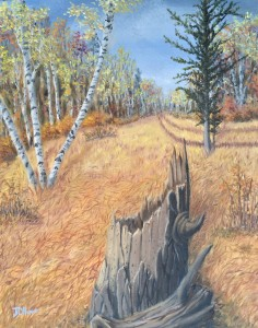 Road Through a Fall Woods is a 20 inch by 16 inch original oil painting on canvas of a woods in autumn with a rural road and a tree stump.