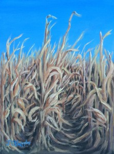 Corn Field Autumn a 12 inch by 9 inch original oil painting on canvas of the edge of a cornfield in bright autumn sunshine.