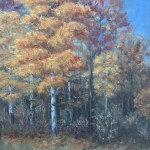 Autumn Woods 3 is a 10 inch by 8 inch original oil painting on canvas of brilliant foliage in an autumn woods featuring the golden foliage of a birch tree.