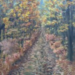 Autumn Foliage is a 10 inch by 8 inch original oil painting on canvas of vibrant autumn foliage along rural forest road.