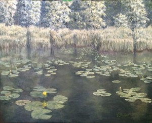Yellow Water Lillies is a 24 inch by 30 inch original oil painting on canvas of lily pads growing near the shore of a small woodland lake.