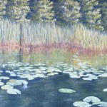 Lily Pads Near Shore 2 is a 16 inch by 20 inch original oil painting on canvas of lily pads growing near the shore of a small woodland lake.