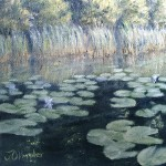 Lily Pads Near Shore 6x6 is a 6 inch by 6 inch original oil painting on canvas of lily pads growing near the shore of a small woodland lake.